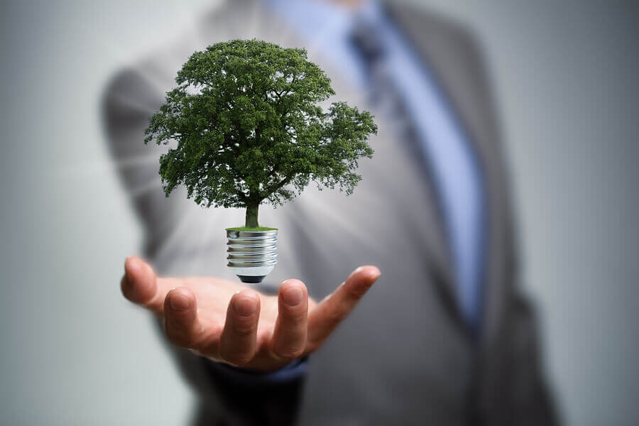 Responsabilidade Social: Quais os benefícios para empresas