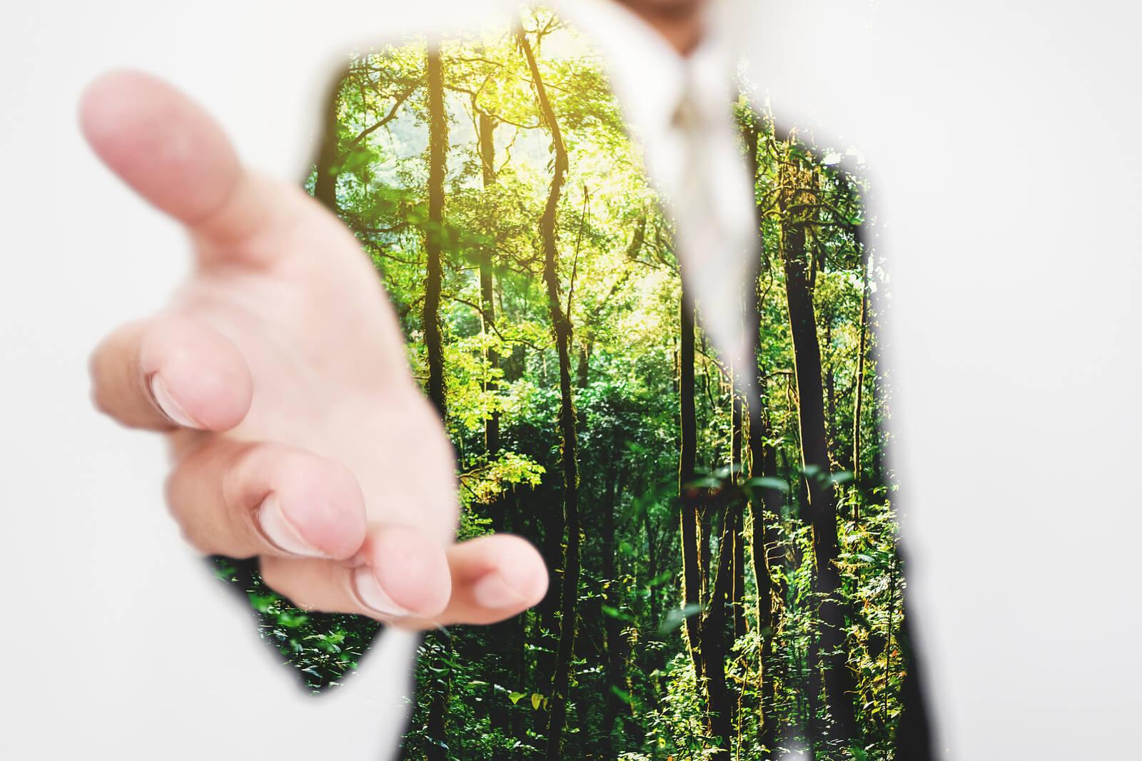 Meio ambiente e sustentabilidade na empresa em prol da Amazônia