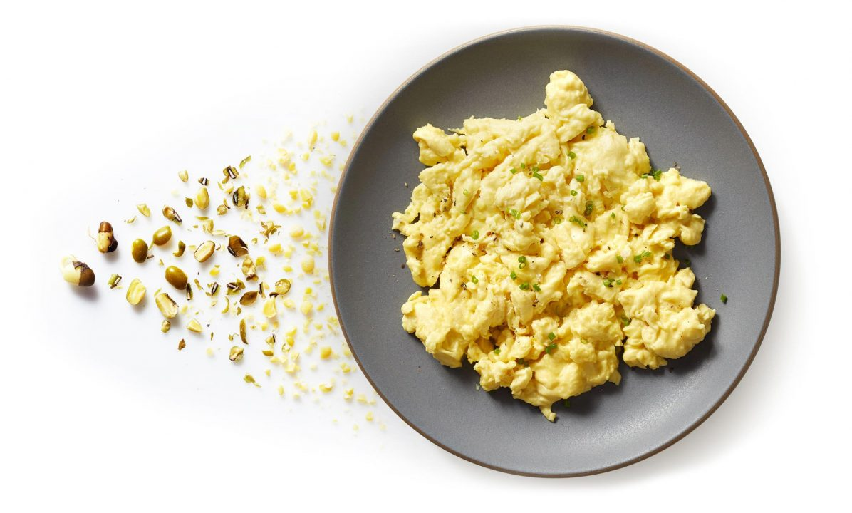 Just Egg: Os ovos sem galinha da JUST Startup