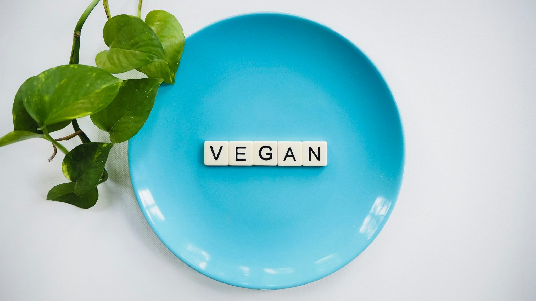O mercado de produtos e alimentos veganos apresenta forte tendência de crescimento.
